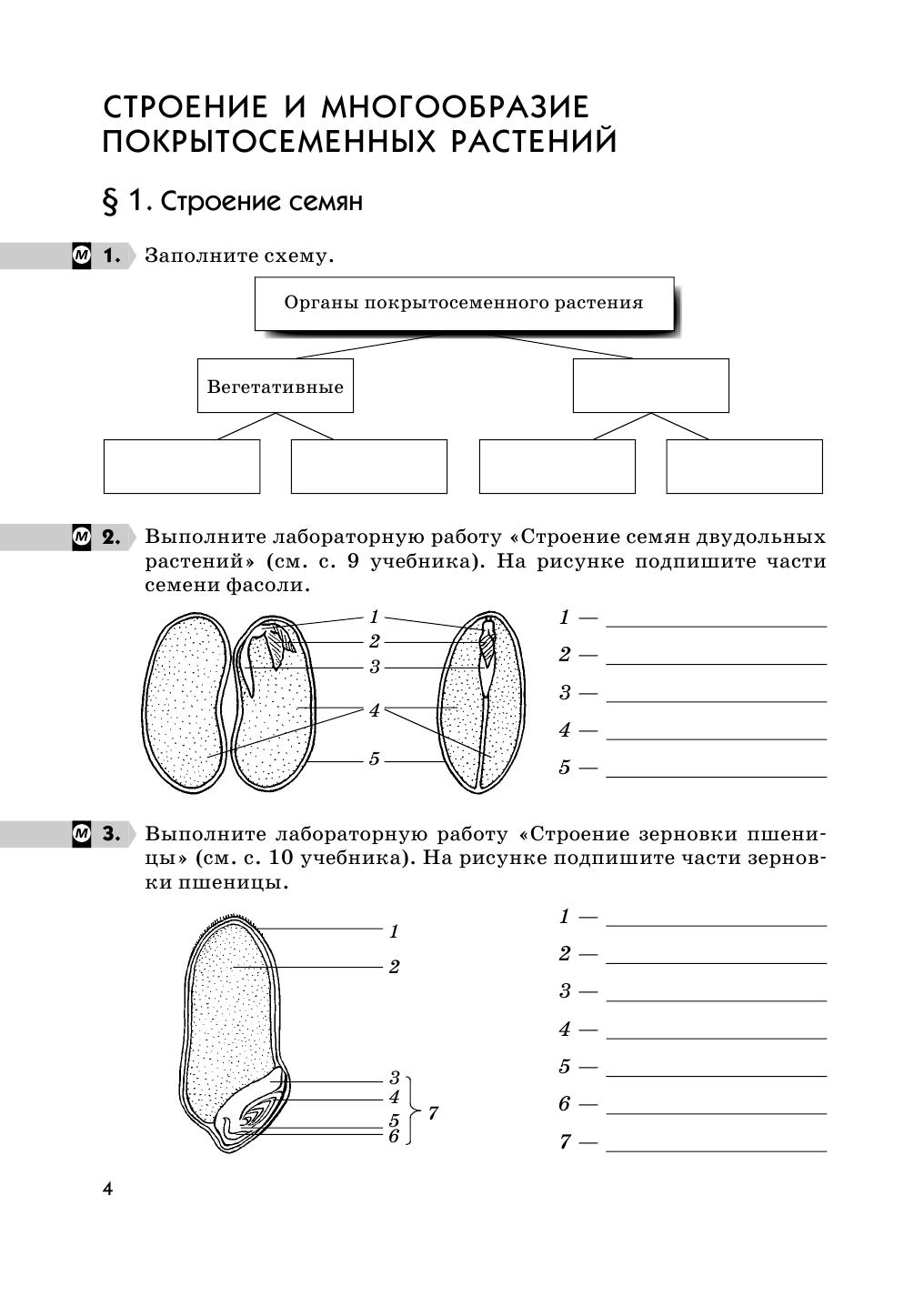 скачать учебник биология 6 класс пасечник pdf