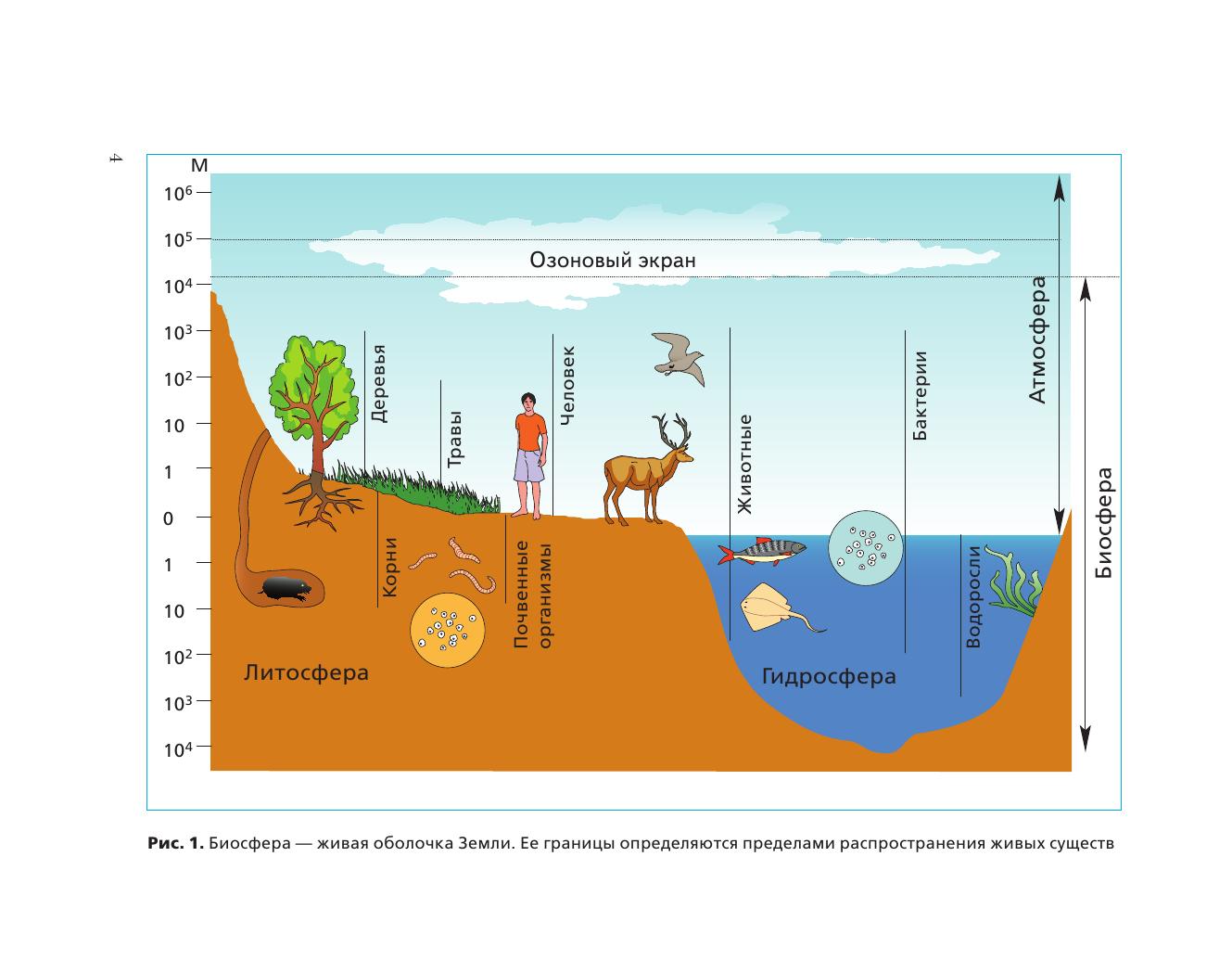 Экология. 9 класс. Биосфера и человечество. Учебное пособие - страница 4